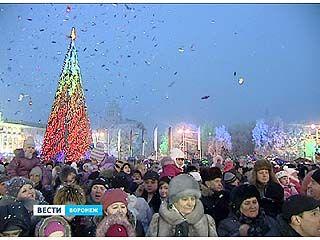 Воронеж встретил 2013 сказочным представлением