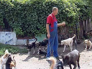 Воронежец Юрий Шамарин держит у себя во дворе 130 собак