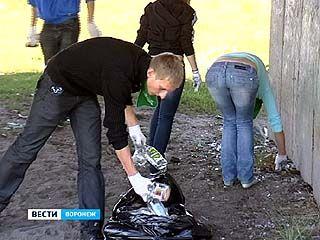 Воронежские блогеры превратились в дворников