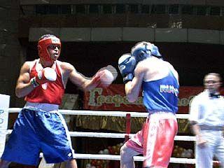 Воронежские боксеры одержали победу над белоруссами и украинцами