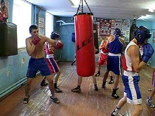 Воронежские боксеры с победой вернулись из Адлера