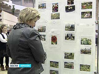 Воронежские дети занялись ландшафтным дизайном