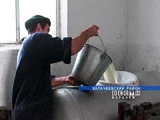Воронежские крестьяне вывели область на третье место в ЦФО