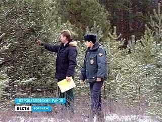 Воронежские леса - под охраной