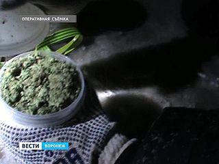 Воронежские полицейские задержали производителя и поставщика наркотиков