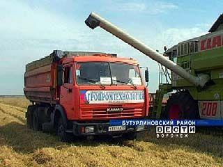 Воронежские сельхозпроизводители закончат год с прибылью