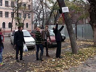 Воронежские студенты вышли на защиту столбов и деревьев
