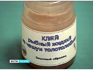 """Воронежские технологи представили свои """"рыбные"""" изобретения"""
