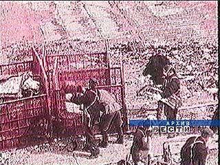Воронежским ликвидаторам аварии на Чернобыльской АЭС вручили награды