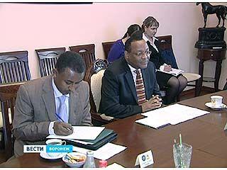 Воронежский губернатор встретился с послом Эфиопии