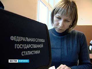 Воронежстат опубликовал результаты переписи населения 2010 года