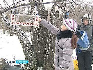 Воронежцы отнесли пернатым в лес новогоднее угощение