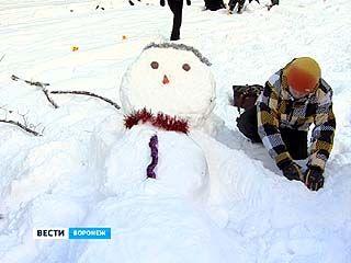 Воронежцы вышли на массовую лепку снеговиков