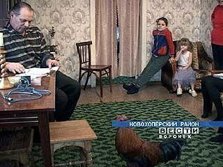 Все деревянные вещи в доме Богдановых сделаны руками мастера