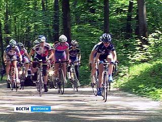 Всероссийские соревнования по велоспорту завершились в Воронеже