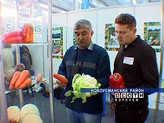 """Выставка """"Урожай-2007"""" впервые проводится в Бабяково"""