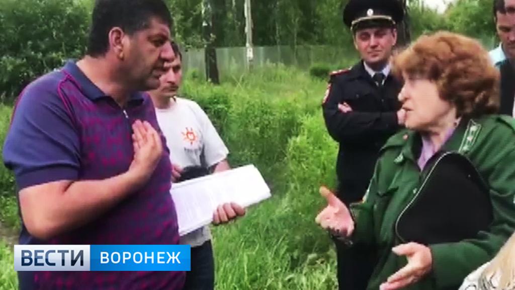 Воронежцы встали «живым щитом» перед техникой, чтобы остановить вырубку леса