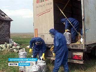 Ядохимикаты из села Кучеряевка Бутурлиновского района всё-таки начали вывозить