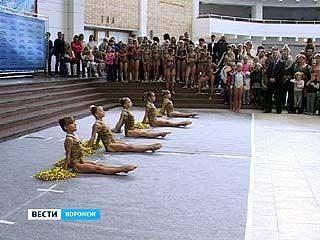 Ярмарка спорта прошла во Дворце Творчества детей и молодежи