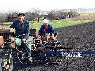 Житель Таловского района придумал свою технологию посадки картофеля