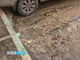Жители Чапаева винят свою УК за вонь от луж с отходами