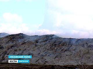Жители Лискинского района задыхаются от гари
