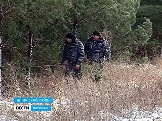 Жители села Большие Ясырки Аннинского района вышли на охрану елок