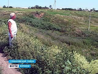 Жители села Листопадовка Грибановкого района невольно подвергаются опасности