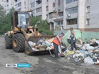 Жители улицы Ломоносова выступают против расчистки свалки
