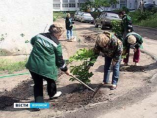 """Жители улицы Перевёрткина и компания """"Сибур-Холдинг"""" провели акцию """"Зелёный двор"""""""