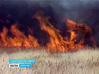 Жители Воронежской области, как только сошёл снег, принялись жечь траву на полях
