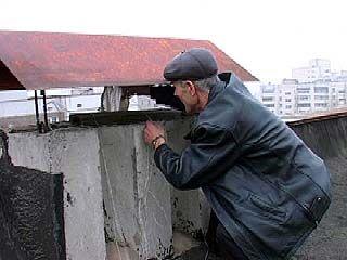 Жителям многоэтажки на улице Димитрова удалось спасти кошку