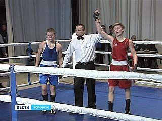 """""""Золотые перчатки"""" для юных боксёров - как воронежцы проявили себя в турнире?"""