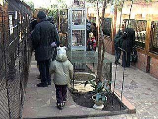 Зоосаду парка Авиастроителей - 10 лет