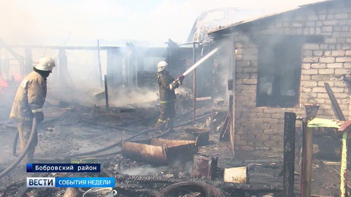 Как избежать катастрофы? В Воронежской области объявлен 5 класс пожароопасности