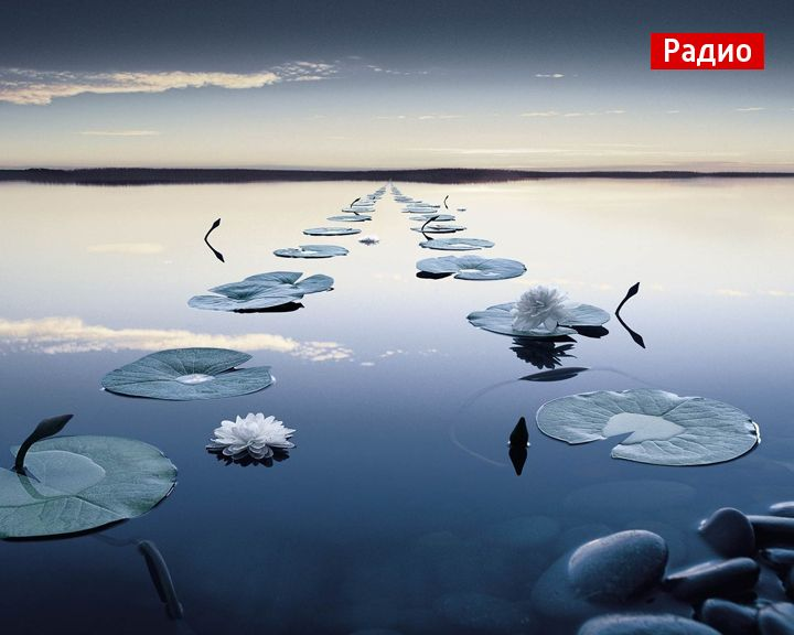 Территория слова: Что означает выражение «войти в одну реку дважды»
