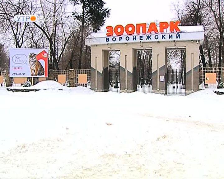 Ведущий Николай Дроздов осудил массовое разрушение птиц вВоронежском зоопарке