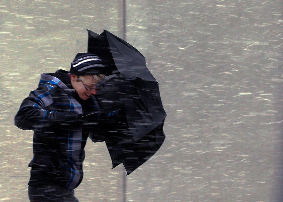 Cотрудники экстренных служб предупредили граждан Воронежской области осильном ветре