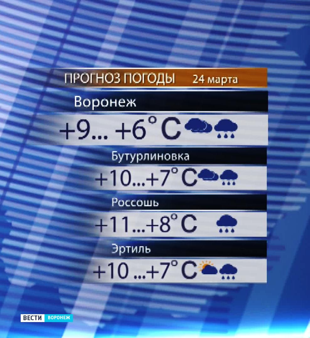 Прогноз погоды на неделю сланцы ленингр.обл