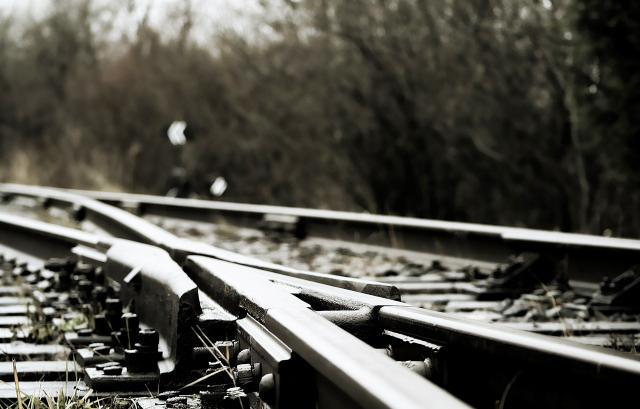 ВВоронежской области под колесами поезда умер мужчина
