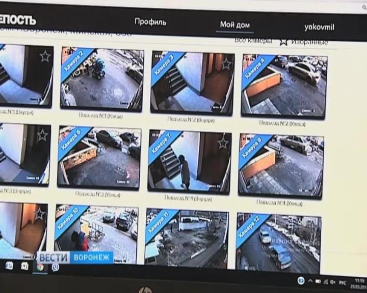 Разные ip камеры в одной программе