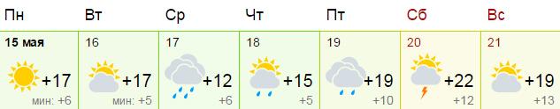 Погода в воронеже на 21 день