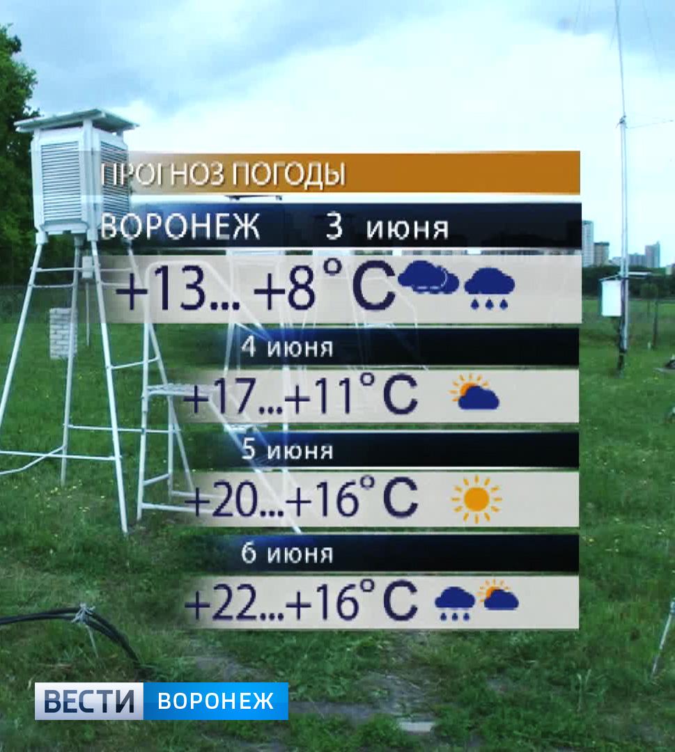 Тв6 курск видео выпусков новостей