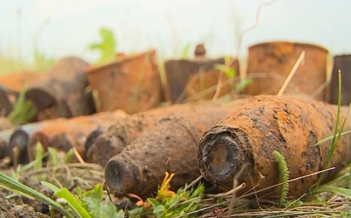 Натерритории АЭС под Воронежем отыскали боеприпасы игранату времен ВОВ