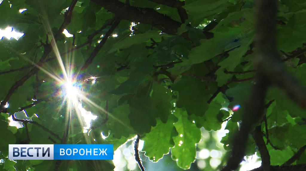 Библиотека украинской литературы в москве новости