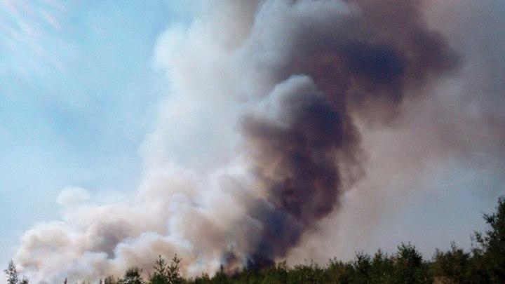 Кошмарный лесной пожар вВоронеже тушили 200 спасателей
