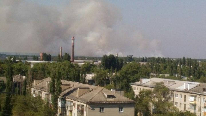 Засутки натерритории Воронежской области появилось 5 ландшафтных илесных пожаров