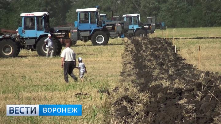 Секс в поле с трактористами — pic 1