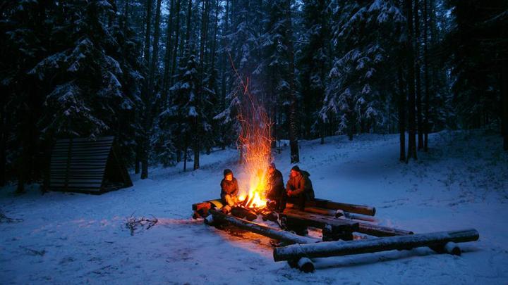 Вканун Нового года воронежцев зовут охранять елки отбраконьеров