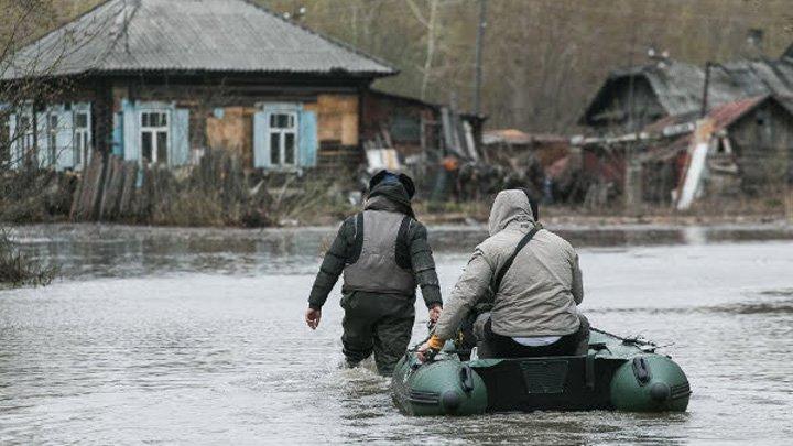 Паводок вВоронежской области отступает— Сводка МЧС